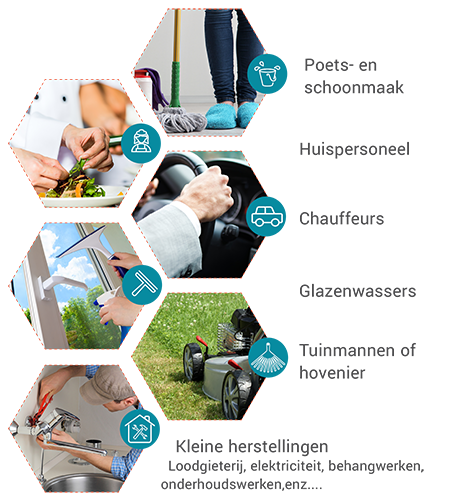 sectoren uitvoerders - bonussysteem diensten aan huis
